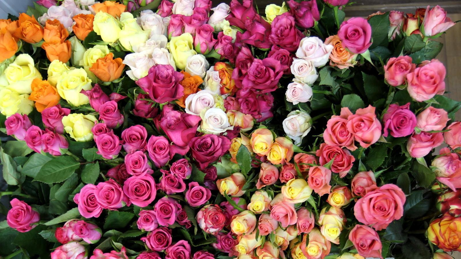 Огромный букет цветов картинка с днем рождения